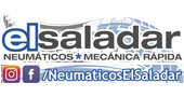 Talleres y concesionarios Las Torres de Cotillas : Neumáticos El Saladar