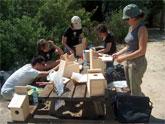Voluntarios ambientales de Molina de Segura colocan cajas nido en el Soto de La Hijuela a orillas del Río Segura
