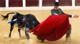 Cehegín se quita el sombrero ante los toreros solidarios