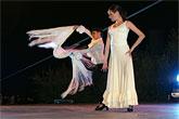 Luz, color y mucho arte en la IX edición del Festival de Flamenco