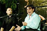 Vuelven los Recitales Flamencos