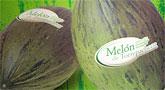 """Cerdá: """"La marca de calidad del melón de Torre Pacheco llevará el nombre de Murcia a todos los paladares de Europa"""""""