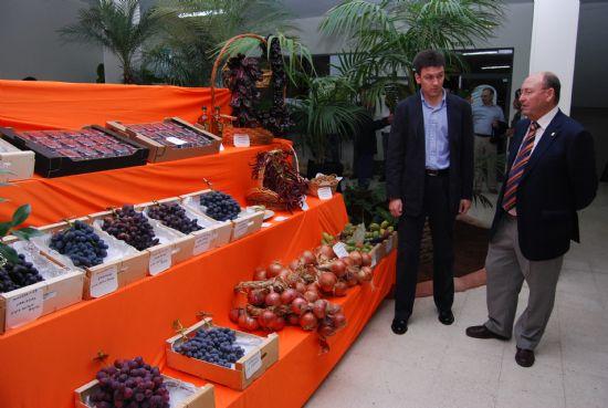 Gran variedad de productos en la Exposición de Uva de Mesa y Productos Agrarios del Bajo Guadalentín, Foto 1