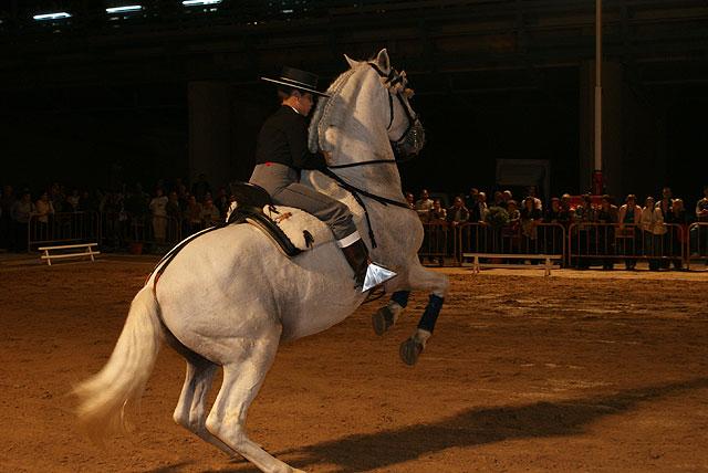 Más de 1.500 personas asistieron al espectáculo ecuestre de la Yeguada Peña de Bejar - 1, Foto 1