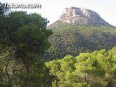 Patrimonio Natural es partidario de la participación ciudadana para mejorar el Parque Regional de Sierra Espuña