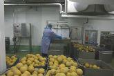 Cerdá anima al sector agroalimentario a seguir manteniendo una industria fuerte e innovadora