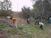 Una veintena de voluntarios ambientales participan en la plantación de árboles autóctonos de ribera en el paraje del Soto de Los Álamos, a orillas del Río Segura