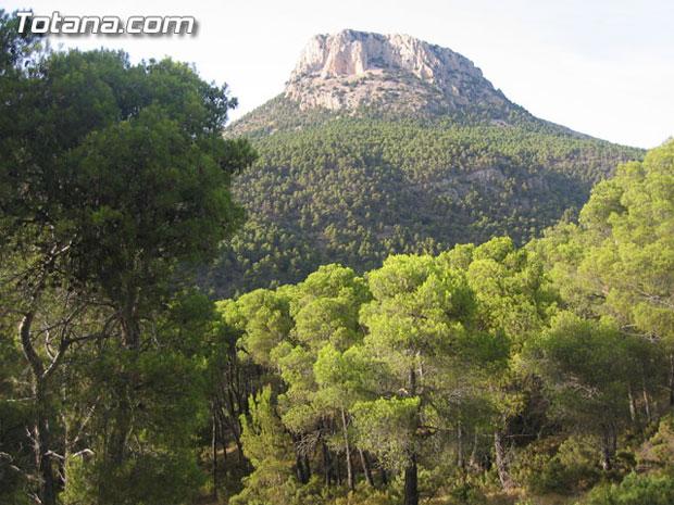 El 80 por ciento  de los murcianos considera Sierra Espuña la zona forestal más valiosa de la Región, Foto 1