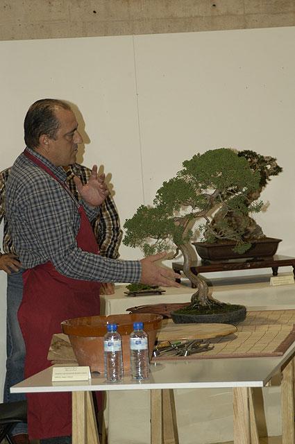 Gran éxito en la demostración práctica de trabajos con bonsái, Foto 2