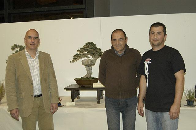 Gran éxito en la demostración práctica de trabajos con bonsái, Foto 3