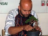 El torreño Antonio Fernández Torres, campeón entre bonsáis