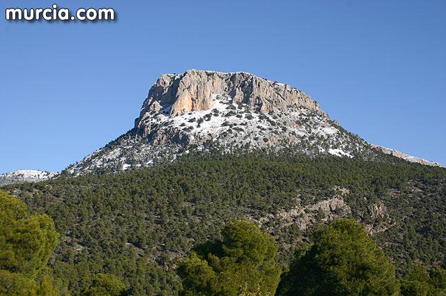 Sierra Espuña reúne los requisitos exigibles a un 'Bosque Modelo', Foto 1