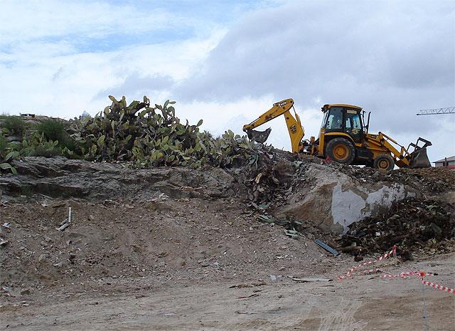 Agricultura elimina unas 100 hectáreas de paleras para combatir la plaga de la cochinilla del carmín - 1, Foto 1