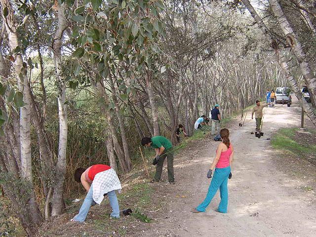Unas 20 personas han participado en el Programa de Voluntariado Ambiental para la Conservación del Río Segura de la Concejalía de Medio Ambiente de Molina de Segura - 3, Foto 3