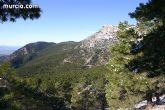 El Parque Regional de Sierra Espuña logra la certificaci�n forestal FSC