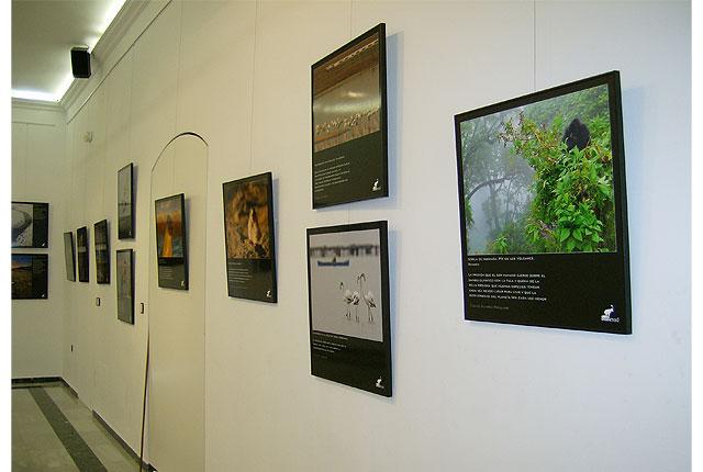 """Se presenta la exposición """"La Naturaleza y el Cambio Climático"""", Foto 1"""