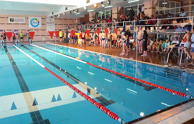 """The athletes swimmers occupational center """"José Moya"""" participate in the Regional Swimming Championships, held in Lorca"""