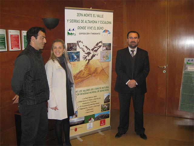 Una exposición permitirá descubrir la importancia de los búhos reales en la ZEPA de El Valle y las sierras de Altaona y Escalona - 1, Foto 1