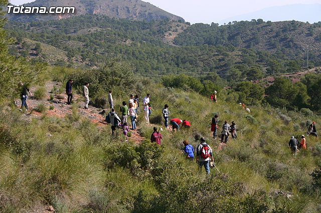 About 200 people participate in the reforestation of an acre on the site of the Virgen Blanca, in the vicinity of the Santa