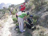 Estudiantes de Secundaria plantan árboles en El Ope