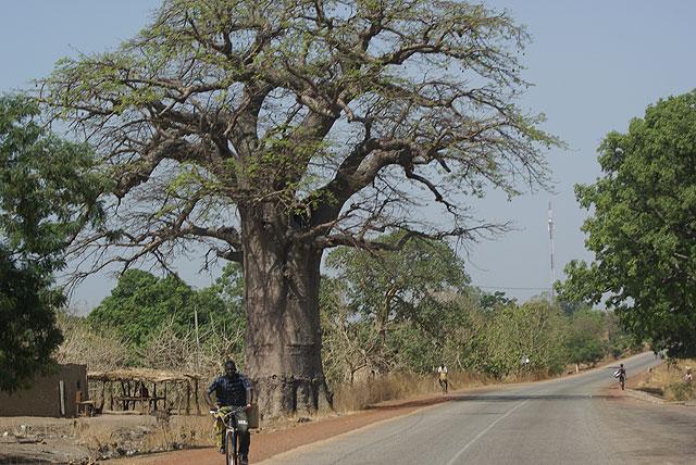 Viaje solidario a Burkina Faso, Foto 1