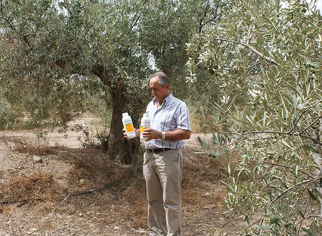 La concejalía de Desarrollo Rural inicia la Campaña Agrícola contra la Mosca de la Fruta - 1, Foto 1