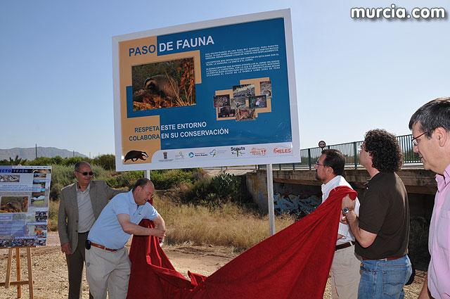 Alhama inaugura el primer Paso de Fauna del Tejón habilitado en nuestra región, Foto 2
