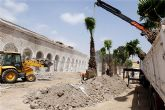 Dos nuevos palmerales para Cartagena