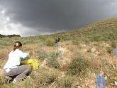 ANSE muestra c�mo se puede controlar la erosi�n y la desertificaci�n en zonas semi�ridas