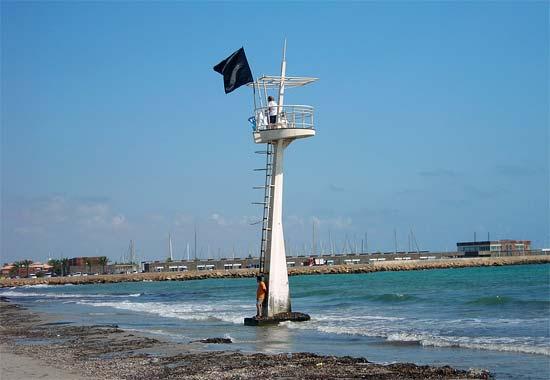 Ecologistas en Acción protesta en la Playa de La Llana colocando una bandera negra - 1, Foto 1