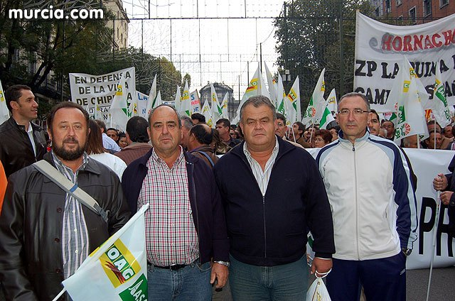 Over two hundred residents of Totana participated in Saturday's demonstration in Madrid organized by the agricultural unions