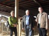 Inaugurada la Feria de Ganado Equino en Puerto Lumbreras