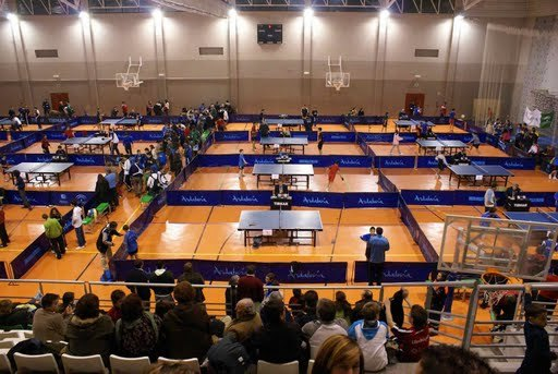 Tenis de mesa. Torneo zonal en La Zubia, Foto 1