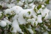 Murcia está en alerta a causa de la nieve, que afecta a casi todo el país