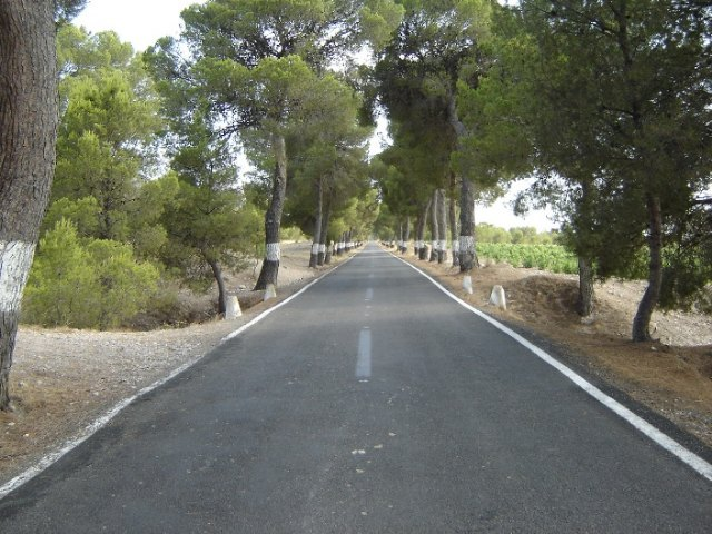 Ecologistas en Acción alerta sobre los daños que provocará el ensanchamiento de la comarcal Cieza-Mula sobre la Sierra del Oro - 2, Foto 2