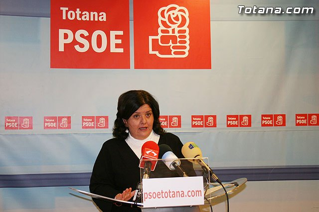 """PSOE: """"Changes made by the councils aldalde show a confused and exhausted project"""""""