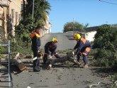 El ayuntamiento y la Agrupaci�n de Voluntarios de Protecci�n Civil firmar�n la pr�rroga del convenio de colaboraci�n en materia de seguridad ciudadana