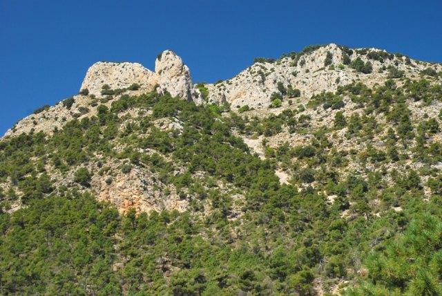 Sierra Espuña y los montes de Mula y Cehegín, más cerca del Bosque Modelo, Foto 2