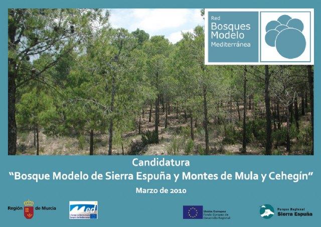 Sierra Espuña y los montes de Mula y Cehegín, más cerca del 'Bosque Modelo', Foto 2