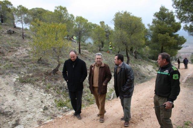 Cerdá  visita los trabajos de regeneración de la zona  incendiada de Moratalla y los embalses de regulación de las zonas regables - 1, Foto 1