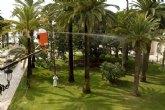 Ensayarán en Cartagena un método novedoso para erradicar el picudo rojo