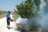 Fumigan de nuevo las inmediaciones del Río Segura a su paso por Alguazas