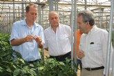 Cerdá destaca la colaboración directa entre agricultores y la Administración regional para buscar soluciones a los problemas del sector