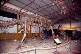 Verano de dinosaurios y animales prehistóricos en Mazarrón