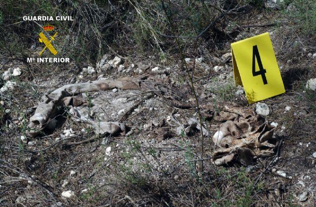 La Guardia Civil esclarece un homicidio acaecido en 2006 - 4, Foto 4