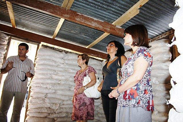 Los refugios para los damnificados por el terremoto en Haití comenzarán a construirse en septiembre - 2, Foto 2