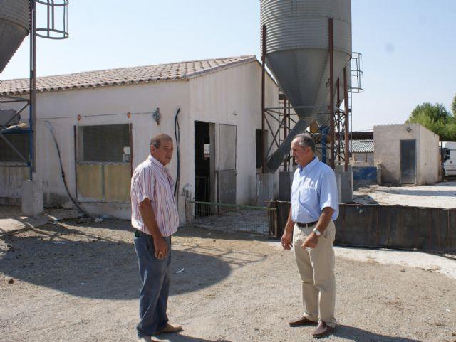 El Ayuntamiento aprueba más de un centenar de licencias de apertura de explotaciones ganaderas - 1, Foto 1