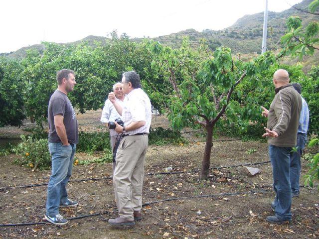 Mazarrón busca nuevas alternativas para la agricultura - 1, Foto 1