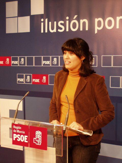 El PSOE lamenta que la candidatura de Murcia para Capital Europea de la Cultura en 2016 sea la única de las aspirantes sin página web - 1, Foto 1
