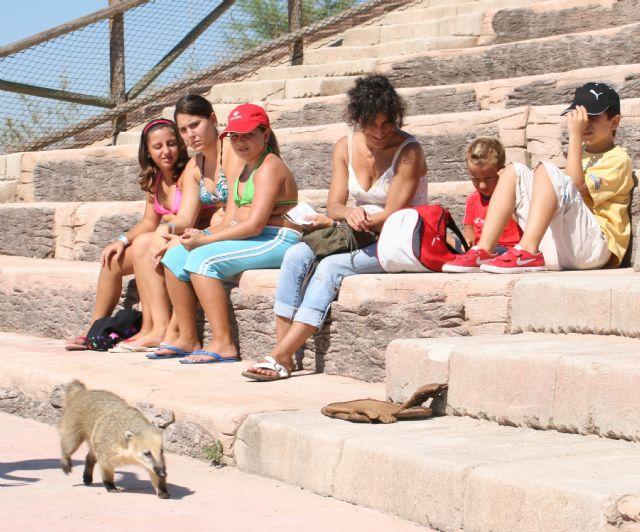 Terra Natura Murcia incorpora mamíferos a su espectáculo de rapaces - 2, Foto 2
